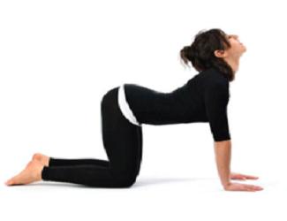 6 động tác tập chuyên trị đau lưng